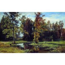 Birch forest 1871