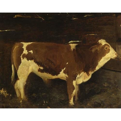 Bull 1863