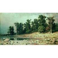 Coast of oak grove of peter the great