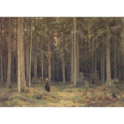 Countess mordvinov s forest 1891