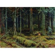 Dark forest 1890