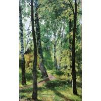 Deciduous forest 1897