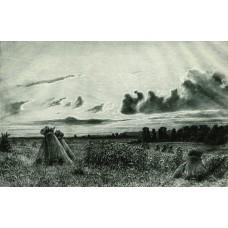 Field 1886