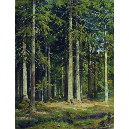 Fir forest 1891