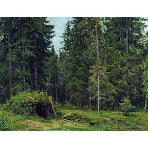 Forest hut 1892