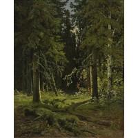 Forest landscape 1878