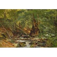 Forest landscape 1879