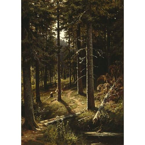 Forest landscape 1890