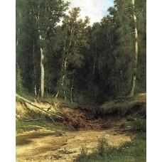 Forest stream 1874