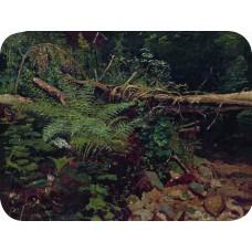 Landscape 1896 1