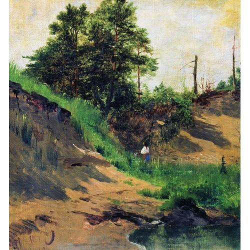 Landscape 1896