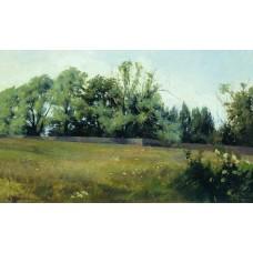 Landscape 1898