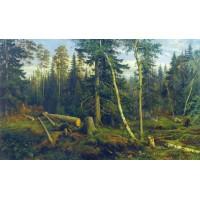 Logging 1867