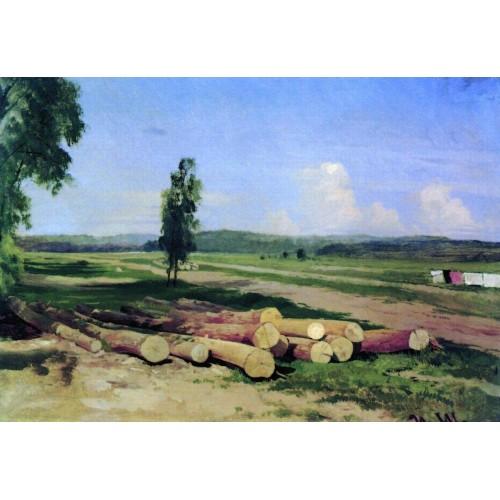 Logs kostiantynovka village near the red village 1869