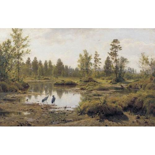 Marsh polissia 1890