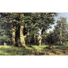 Oak grove 1887