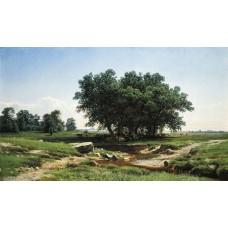 Oaks 1886