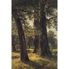 Oaks 1887