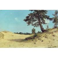 Pine on sand 1884