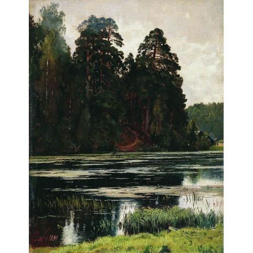 Pond 1881