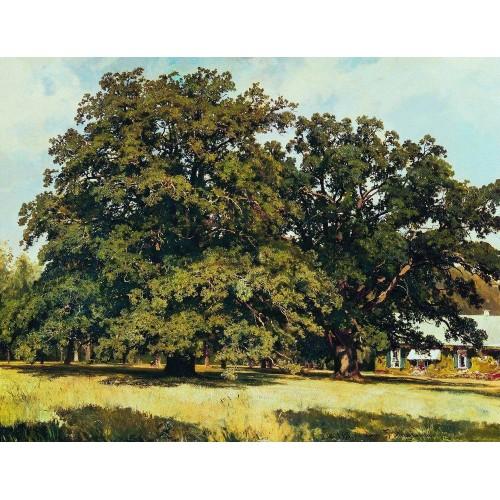 The mordvinovo oaks 1891