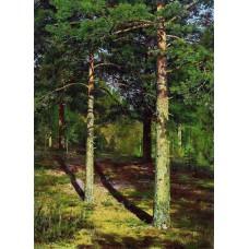 The sun lit pines 1886