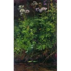 Wildflowers near the water 1890