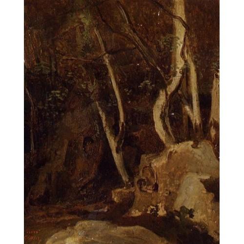 Civita Castellana Rocks with Trees