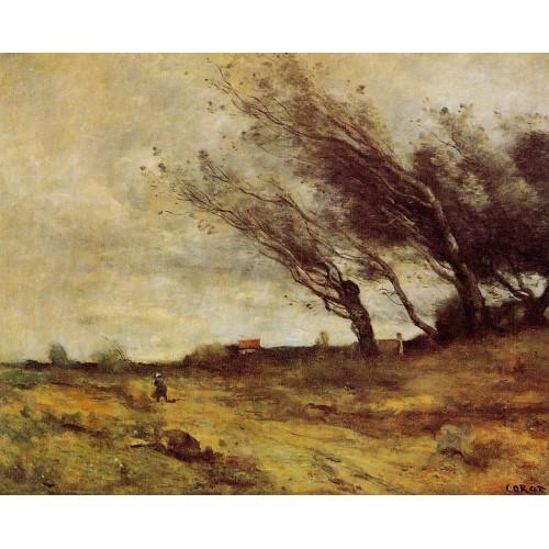 Windswept Landscape