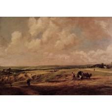 Hamstead Heath