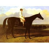 Jonathan Wild a drak bay Race Horse at Goodwood