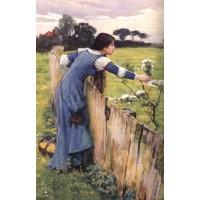 The Flower Picker