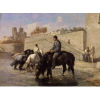 Chevaux s'Abreuvant dans la Seine Derriere Notre Dame
