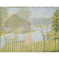 Underwear on the fence 1903