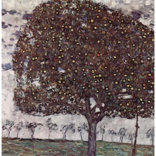 Apple tree ii 1
