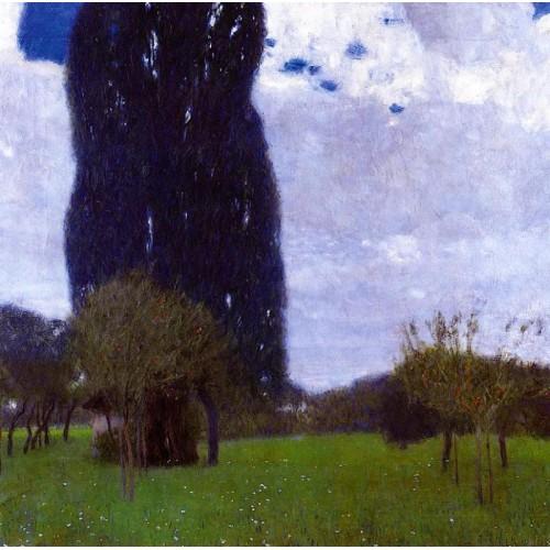 The tall poplar trees ii