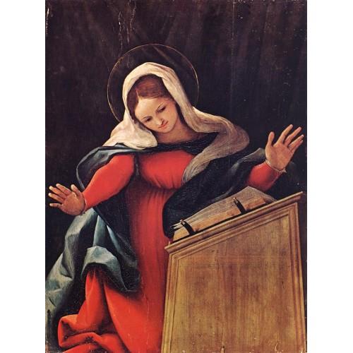 Virgin Annunciated