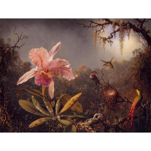 Cattleya Orchid and Three Brazilian Hummingbirds