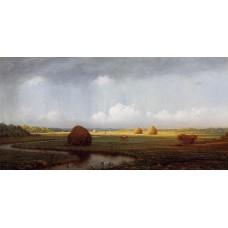 Sudden Shower Newbury Marshes