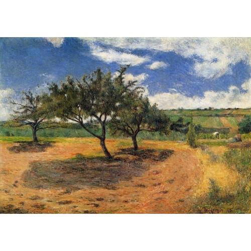Apple Trees at l'Hermitage