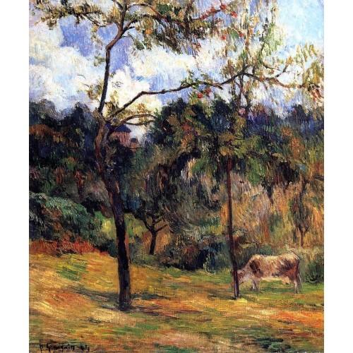 Cow in a Meadow Rouen