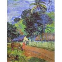 Horse on Road Tahitian Landscape