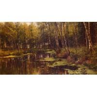 A Woodland Pond