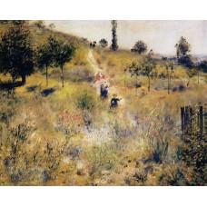 Path Leading through Tall Grass