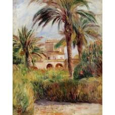 The Test Garden in Algiers