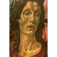 San Barnaba Altarpiece (head of St John)
