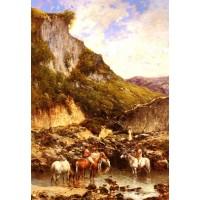 The Noble Ravine