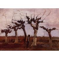 Landscape with Pollard Birches