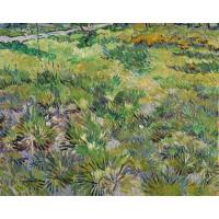 Meadow in the garden of saint paul hospital