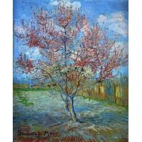 Peach tree in bloom in memory of mauve